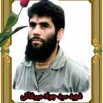 قاب شهید سید جواد میرشاکی