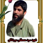 قاب شهید سید مصطفی میرشاکی