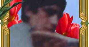 شهید علی محمد رومیانی